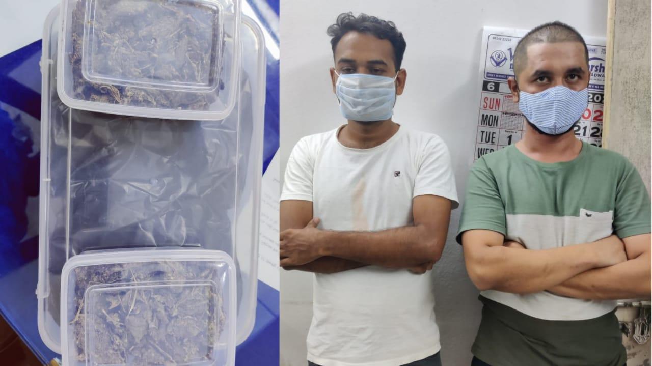 Gujarat, Rajkot Police SOG Arrested 2 Accused with marijuana